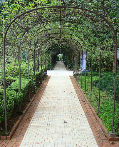 Foto13CasadasRosas–jardim