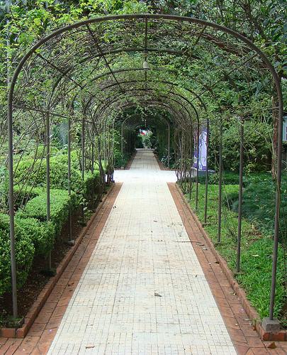 Foto-13-Casa-das-Rosas-–-jardim